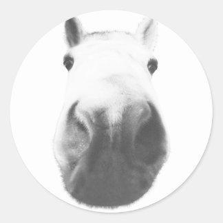 Horse head round stickers