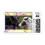 Horse Hearts Postage Stamps