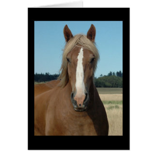 Horse Hello Greeting Card