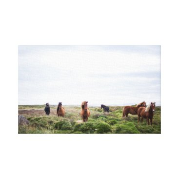 USA Themed Horse Herd  | Animal Photography Canvas Print