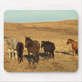 Horse Herd in the West Mouse Pad
