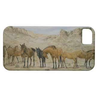 Horse Herd iPhone 5 Case