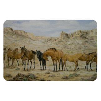 Horse Herd Magnet
