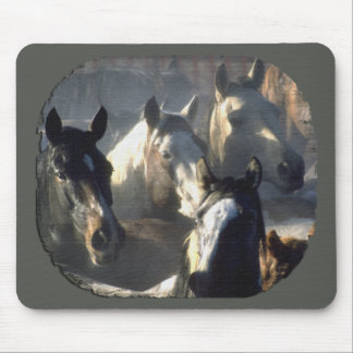 Horse Herd Mouse Pad