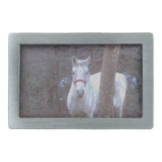 Horse Hiding Place Belt Buckle