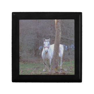 Horse Hiding Place Gift Box