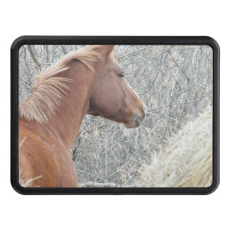 Horse Hitch Tow Hitch Covers
