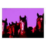 Horse - Horses Greeting Card