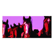 Horse - Horses Rack Card