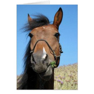 """Horse """"How ya doing???"""" Greeting Card"""