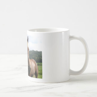 Horse Humor: Got Morgan? Mug