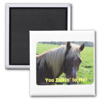 Horse Humor: You Talkin to Me? Magnet
