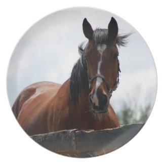 Horse II Dinner Plate