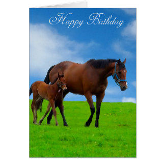 Horse Images for greeting card