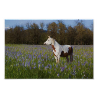 Horse in a Field of Flowers Poster