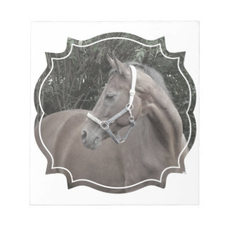 horse in a frame scratch pad