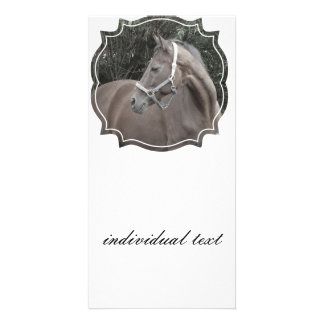 horse in a frame photo card