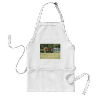 Horse in a pen adult apron