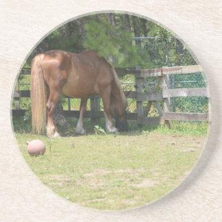 Horse in a pen coaster
