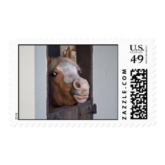 Horse in a Stable Postage Stamp