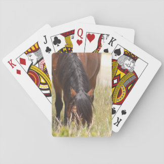 Horse in Amber Sunset Playing Cards