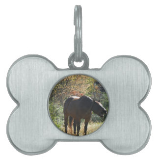 Horse in Autumn Pet Name Tag