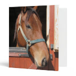 Horse in Barn Binder