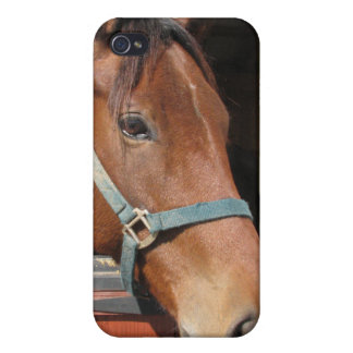 Horse in Barn Case For iPhone 4