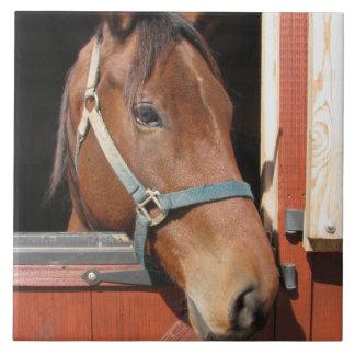 Horse in Barn Ceramic Tile