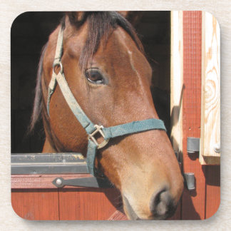 Horse in Barn Coaster