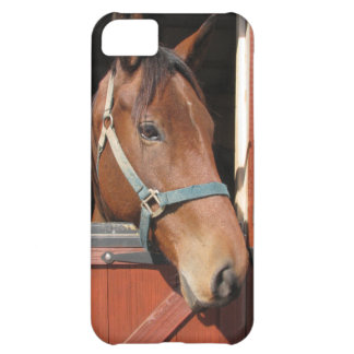 Horse in Barn Cover For iPhone 5C