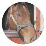 Horse in Barn Dinner Plate