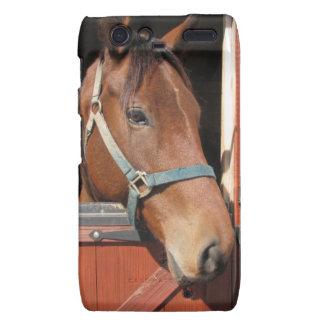 Horse in Barn Droid RAZR Cases