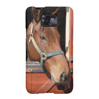Horse in Barn Galaxy S2 Cover