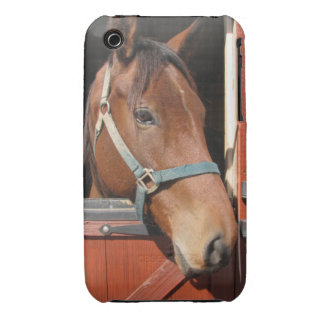 Horse in Barn iPhone 3 Cases