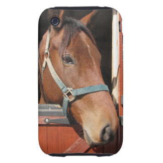 Horse in Barn iPhone 3 Tough Case