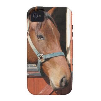Horse in Barn iPhone 4 Case