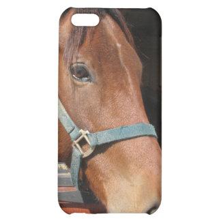 Horse in Barn iPhone 5C Cases