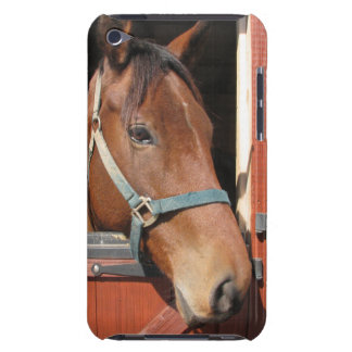 Horse in Barn iPod Touch Case