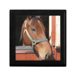 Horse in Barn Keepsake Box