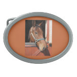 Horse in Barn Oval Belt Buckle