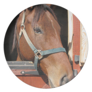 Horse in Barn Party Plate