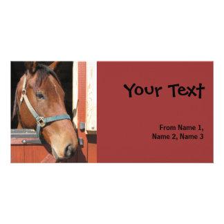 Horse in Barn Photo Card Template
