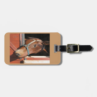 Horse in Barn Tag For Bags