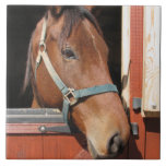 Horse in Barn Tile