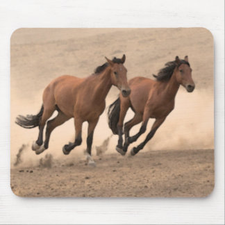 Horse In Fall II Mouse Pad