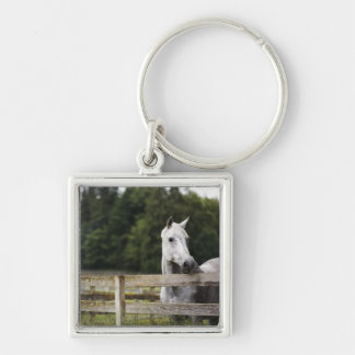 Horse in field looking over fence key chain