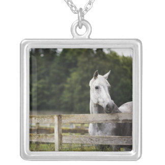 Horse in field looking over fence personalized necklace