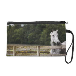 Horse in field looking over fence wristlet