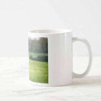 Horse in field near ballyvaloo, Blackwater, Wexfor Coffee Mug